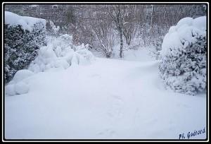 neige le 12 mars 2013 au matin