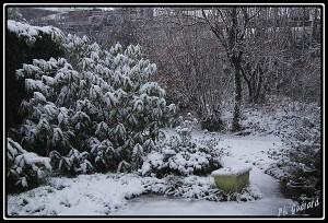 Neige le 11 mars 2013