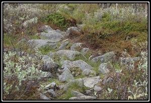 chemin rochers