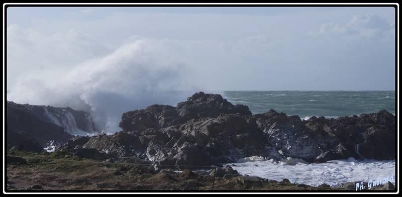 vague rocher