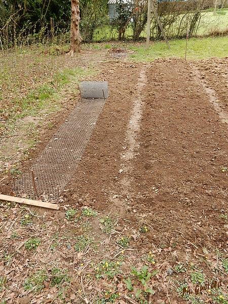 Un petit peu de jardinage blog d 39 un vieux for Les meilleurs sites de jardinage
