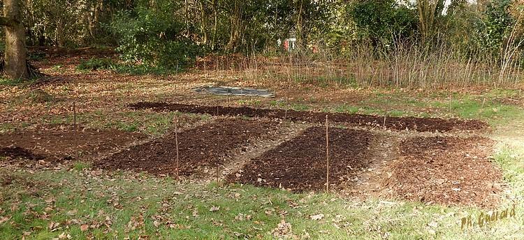 jardin en préparation