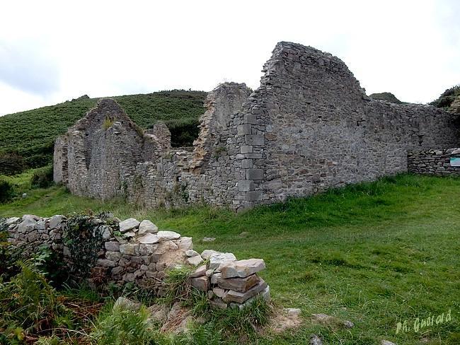Ruines de La Cotentine