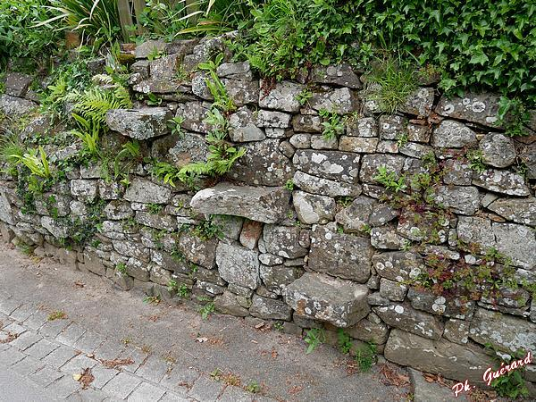 Escalier dans le mur