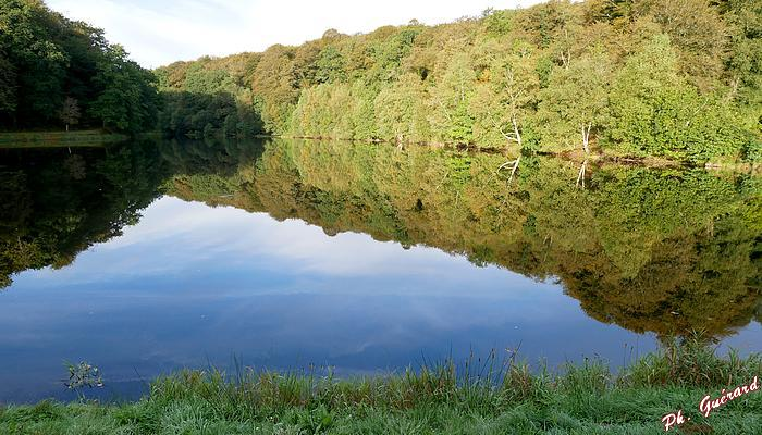 étang forêt de St-Sever-Calvados