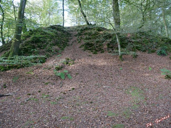 la Motte Castrale vue d'en bas