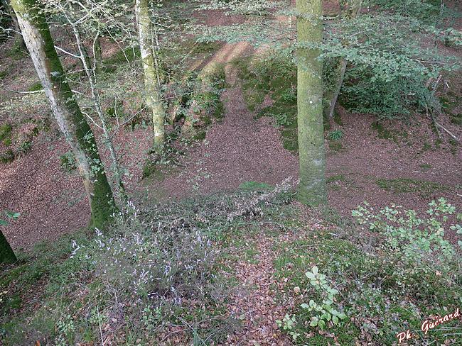 la Motte Castrale fossé et murs