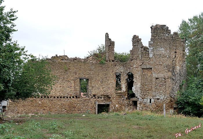 Ruines du Château du Bois Frou