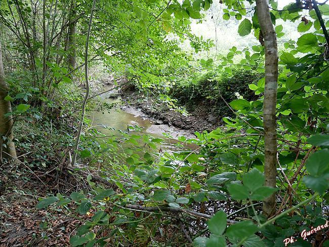 Chemin bord de rivière