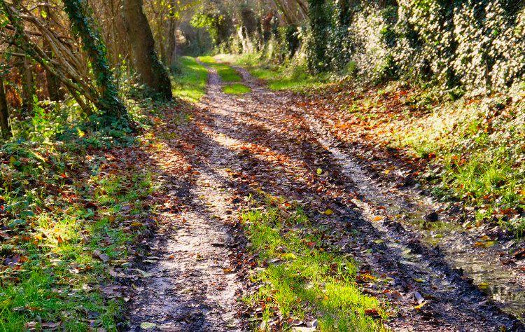 Chemin de la Vallée des Moulins