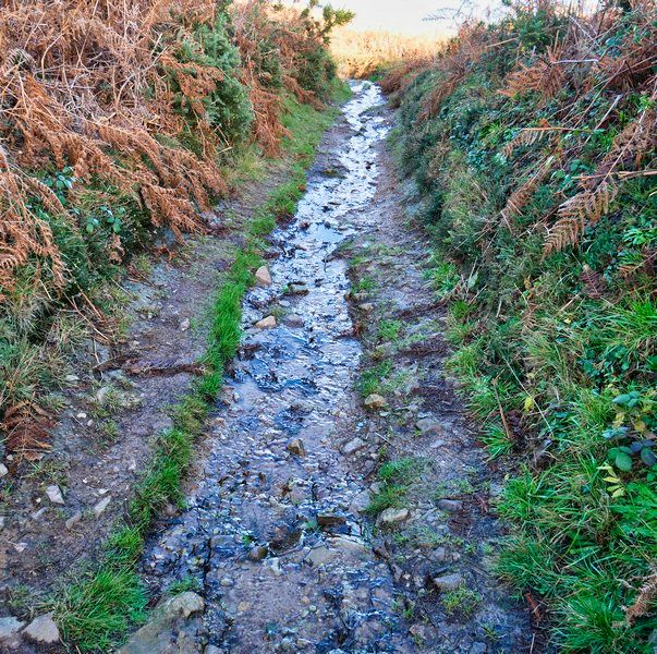 Chemin ou ruisseau ?